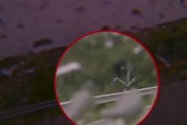 Mira el video de la fuerte caida en el Giro 2014
