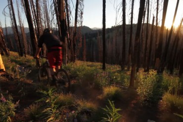 Matt Hunter recorre el Valle del Sol en su bicicleta Specialized