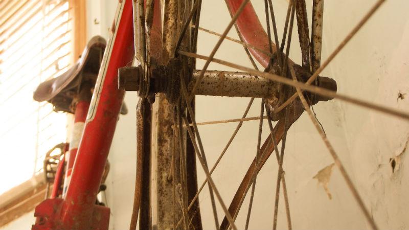 Thiago Le Brun Nada se compara al placer de un paseo en Bicicleta